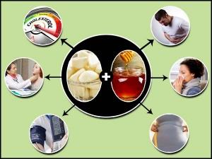 Garlic Honey Helps Treat Blood Pressure Weight Loss Cholesterol Digestion