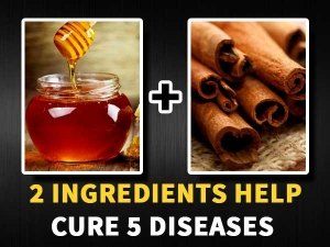 Honey Cinnamon Cures Eight Diseases Indigestion Cold Heart