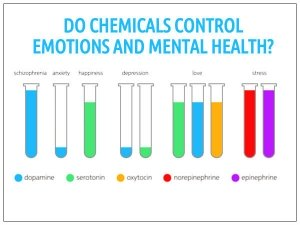 How Chemicals Control Your Thoughts And Feelings