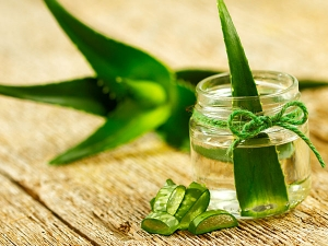 How To Treat Wrinkle Skin With Aloe Vera