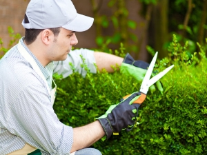 Home Maintenance Tips For Spring