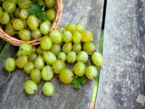 Ten Reasons To Include Amla In Your Daily Diet