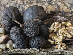 Foods To Kill Intestinal Parasites Naturally