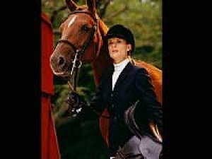 Horse Best Friend