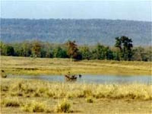 Bandhavgarh Travel Blog
