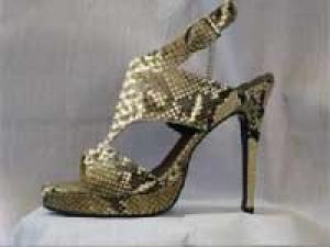 Snake Shoes Fashion Python 240311 Aid
