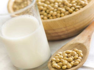 Vegetarian Protein Foods Part