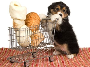 Manage Food Waste