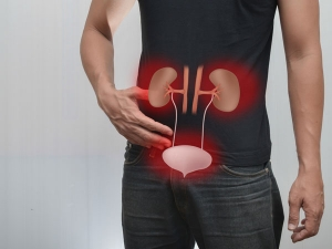 14 Herbal Remedies For Urinary Problems