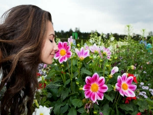 Ten Ways To Smell Good All Day In Summer