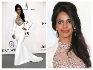 amfAR 2015: Mallika's Frosted Gown
