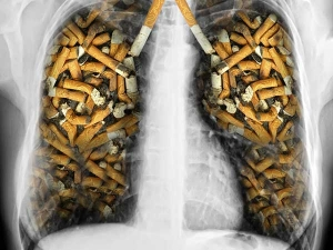 Ways Smokers Can Purify Their Lungs