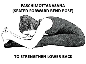 Paschimottanasana Seated Forward Bend Pose To Strengthen Lower Back