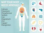 Why Do We Need Minerals In Our Diet