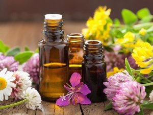 Essential Oils Which Can Be Used As A Perfume
