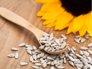 Liver Carcinogen Traced To Sunflower Seeds