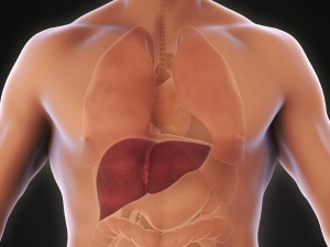 Everything About Healthy Liver Cleanse