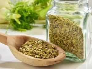 Fennel Recipes For Stomach Bloating And Gas