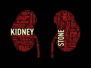 Healthy Foods For Kidney Stone Treatment