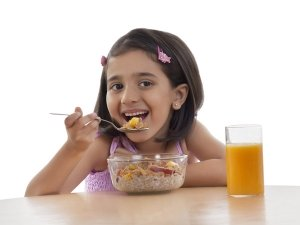 What Should You Feed Your Toddler