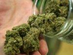 Marijuana May Up Psychosis Risk In Teenagers