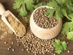 Ways To Treat Urinary Tract Infection With Coriander Seeds