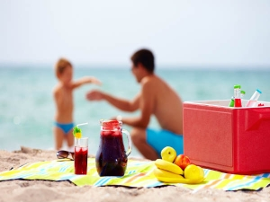Healthy Beach Day Snacks For A Flat Belly