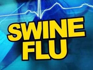 Swine Flu Death Positive Cases Punjab