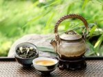 Green Tea Health Benefits Right Way To Brew