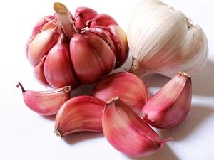 Ancient Raw Garlic Can Help Lose Three Kilos A Month