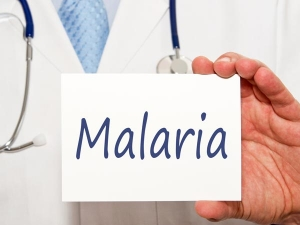 Indian Scientists Develop Molecule To Fight Malaria
