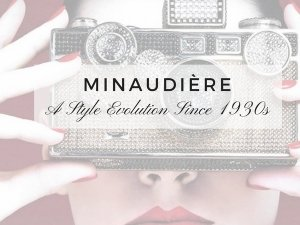 All About Minaudiere Purse