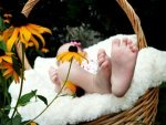 Foods That Bring Strength To Babys Feet