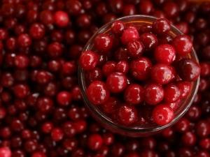 International Women S Day 10 Foods That Prevent Uti