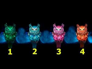 Pick An Owl And Know The True Side Of You
