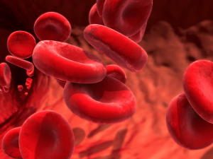 These Interesting Facts About Blood Clots Will Shock You