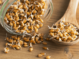 Health Benefits Of Eating Soaked Sprouted And Sour Grains