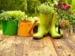Quick And Easy Gardening Tips
