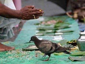 Astrological Remedies To Remove Pitra Dosha As Per Lagna Rashi