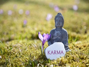 Interesting Facts About Karma