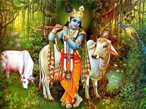 Gopashtami Puja 2018 Puja Vidhi Muhurat And Katha