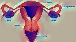 Endometrial Cancer Causes Symptoms Treatment