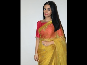 Amrita Rao A Golden Sari Thackeray Promotions