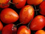 Tamarillo Nutrition Benefits Recipes