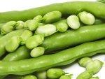 Lima Beans Nutrition Benefits Recipe