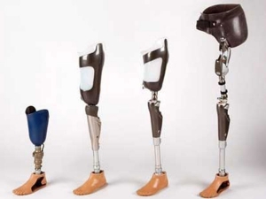 Limb Prosthetic Devices