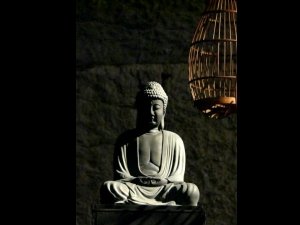 Story Lord Buddha The And Little Girl