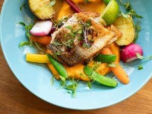 Dash Diet For Kidney Health