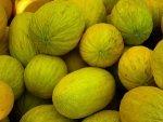 Crenshaw Melon Nutrition Benefits Recipes