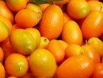 Kumquat Nutrition Benefits Recipes
